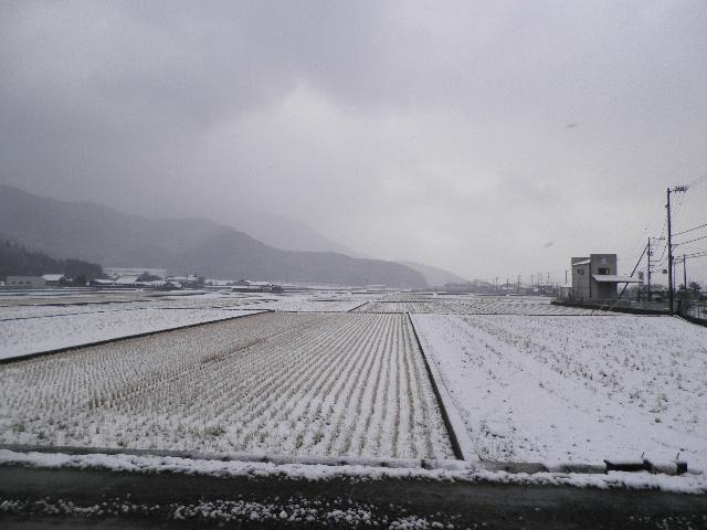 宇和の雪景色.jpg